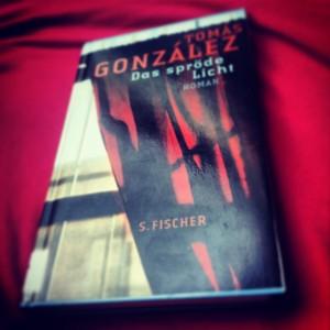Tomás González – Das spröde Licht