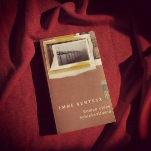 Imre Kertész - Roman eines Schicksallosen