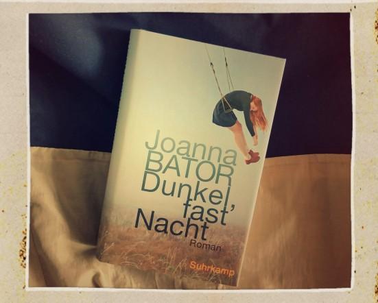 Joanna Bator - Dunkel, fast Nacht