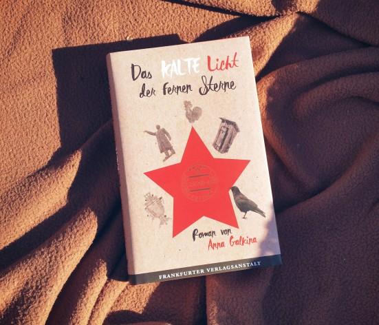 Anna Galkina - Das kalte Licht der fernen Sterne